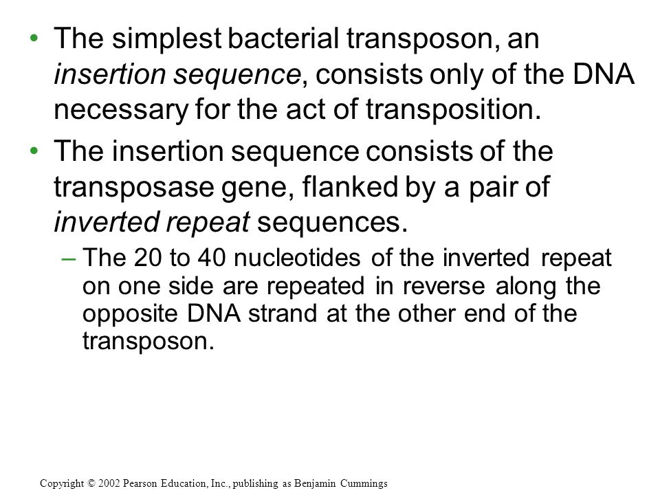The simplest bacterial transposon, an insertion sequence, consists only of the DNA necessary for the act of transposition.