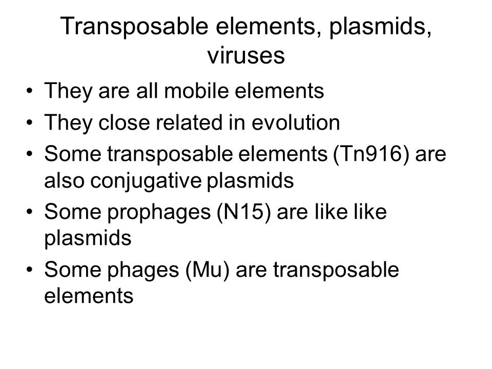 Transposable elements, plasmids, viruses They are all mobile elements They close related in evolution Some transposable elements (Tn916) are also conjugative plasmids Some prophages (N15) are like like plasmids Some phages (Mu) are transposable elements