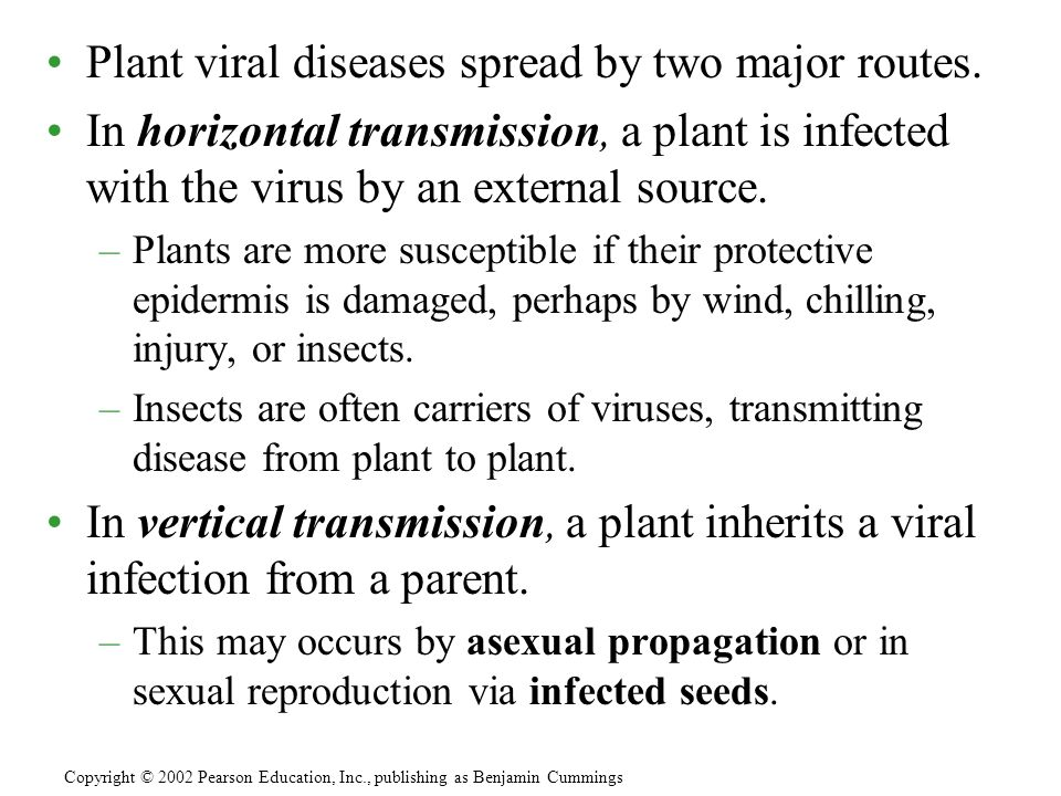 Plant viral diseases spread by two major routes.