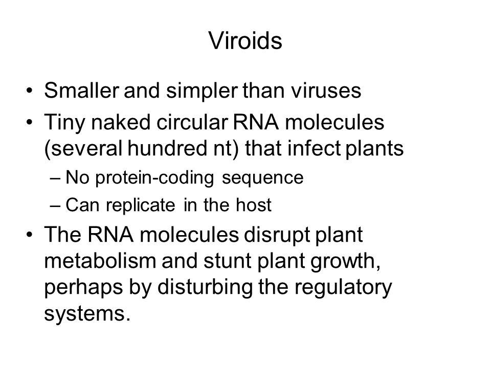Viroids Smaller and simpler than viruses Tiny naked circular RNA molecules (several hundred nt) that infect plants –No protein-coding sequence –Can replicate in the host The RNA molecules disrupt plant metabolism and stunt plant growth, perhaps by disturbing the regulatory systems.