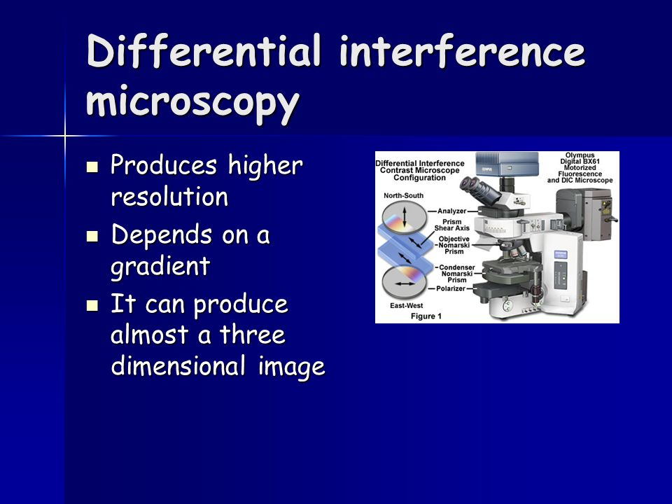 Differential interference microscopy Produces higher resolution Produces higher resolution Depends on a gradient Depends on a gradient It can produce almost a three dimensional image It can produce almost a three dimensional image