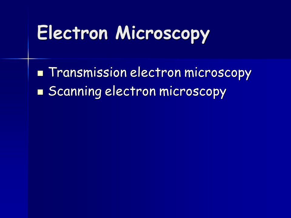 Electron Microscopy Transmission electron microscopy Transmission electron microscopy Scanning electron microscopy Scanning electron microscopy