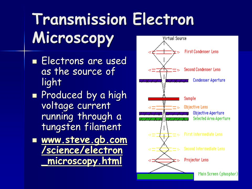 Transmission Electron Microscopy Electrons are used as the source of light Electrons are used as the source of light Produced by a high voltage curren