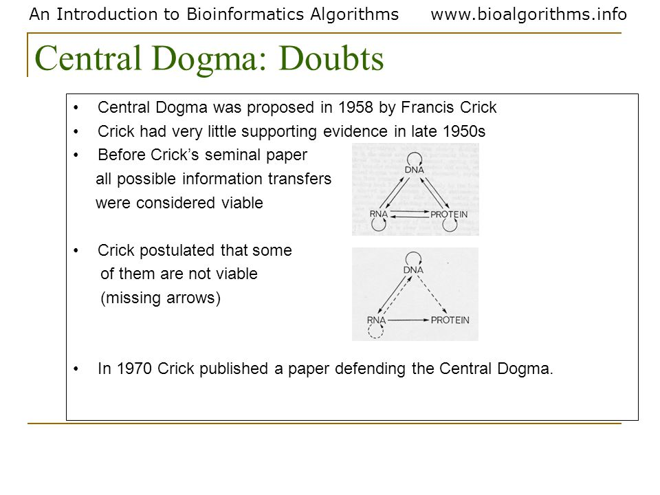 An Introduction to Bioinformatics Algorithmswww.bioalgorithms.info Central Dogma was proposed in 1958 by Francis Crick Crick had very little supportin