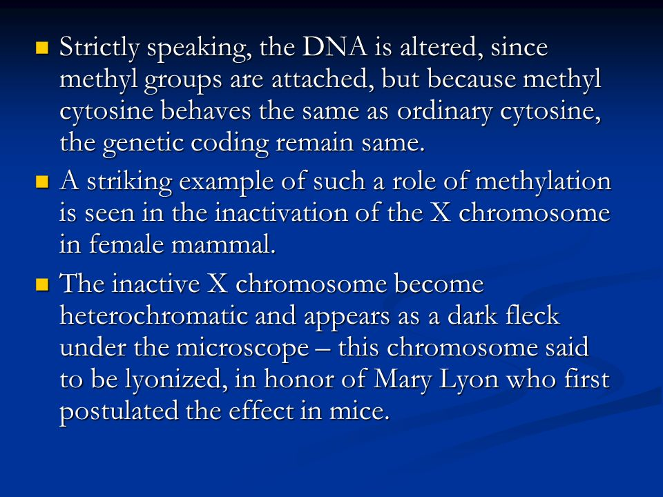Strictly speaking, the DNA is altered, since methyl groups are attached, but because methyl cytosine behaves the same as ordinary cytosine, the geneti
