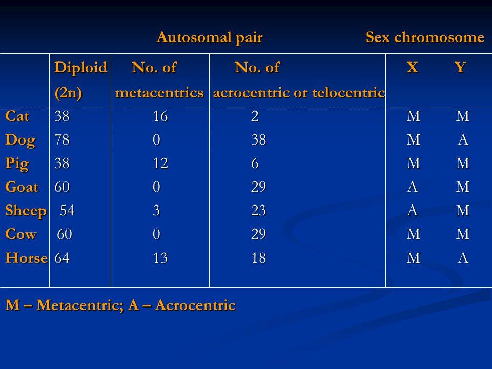 Autosomal pair Sex chromosome Autosomal pair Sex chromosome Diploid No.