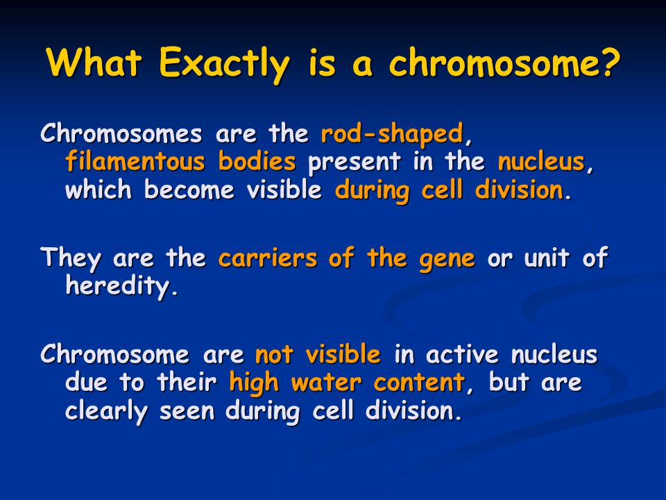 What Exactly is a chromosome? Chromosomes are the rod-shaped, filamentous bodies present in the nucleus, which become visible during cell division. Th