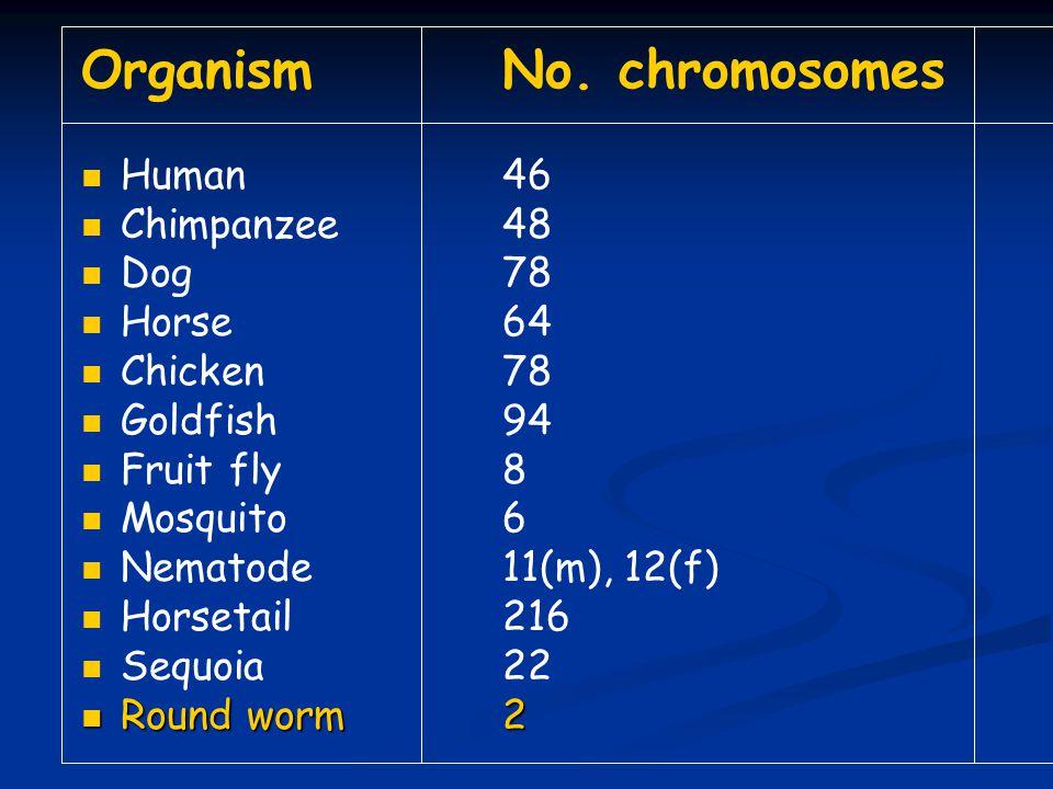OrganismNo.