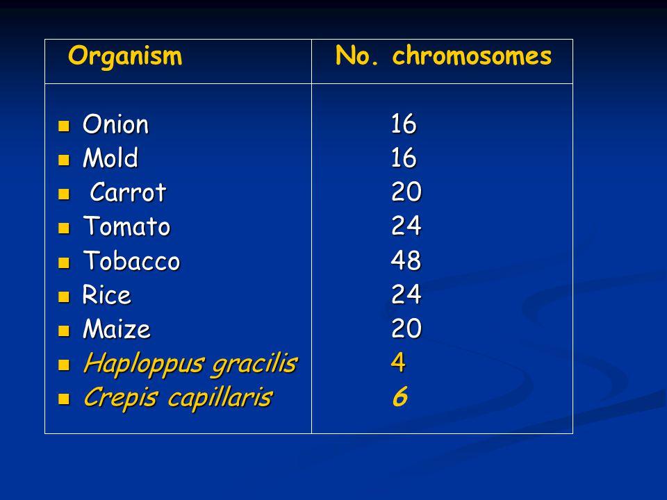 Organism No.