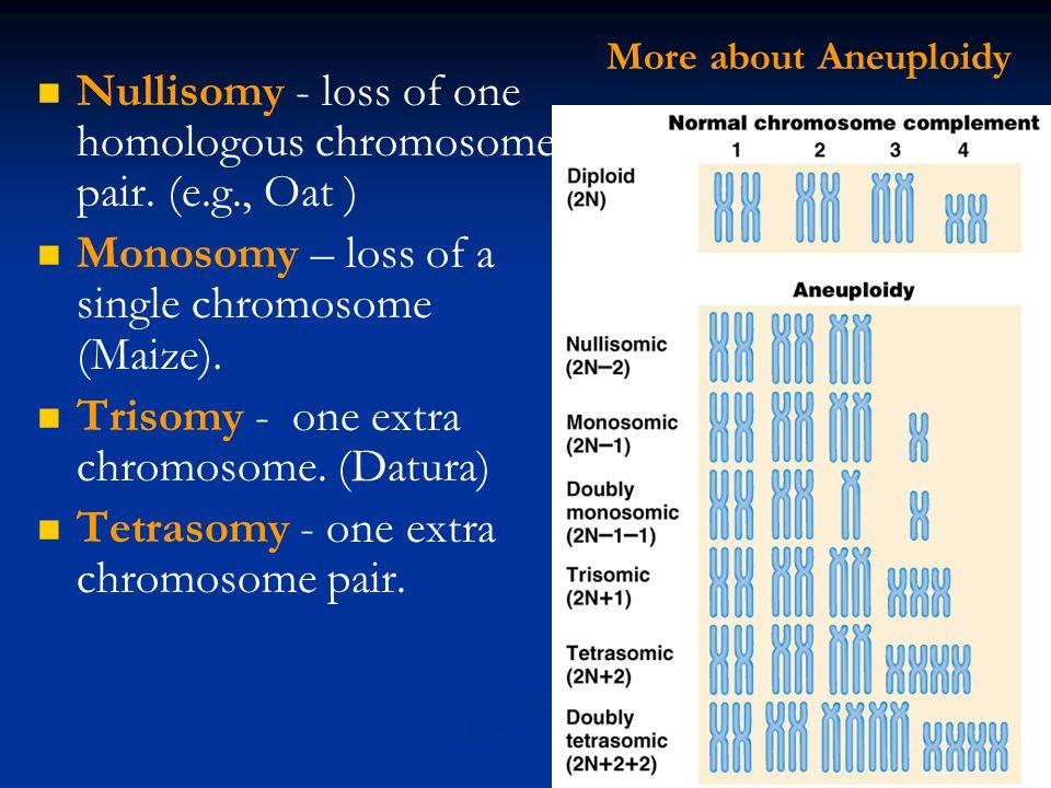 Nullisomy - loss of one homologous chromosome pair.