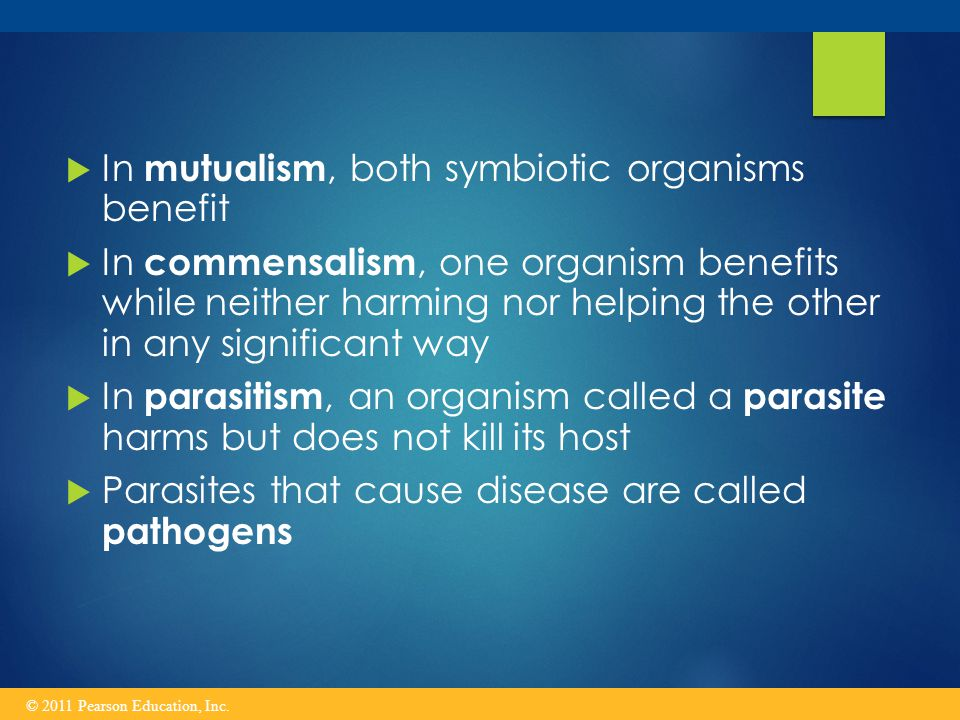  In mutualism, both symbiotic organisms benefit  In commensalism, one organism benefits while neither harming nor helping the other in any significant way  In parasitism, an organism called a parasite harms but does not kill its host  Parasites that cause disease are called pathogens © 2011 Pearson Education, Inc.