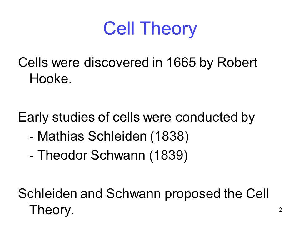 2 Cell Theory Cells were discovered in 1665 by Robert Hooke. Early studies of cells were conducted by - Mathias Schleiden (1838) - Theodor Schwann (18