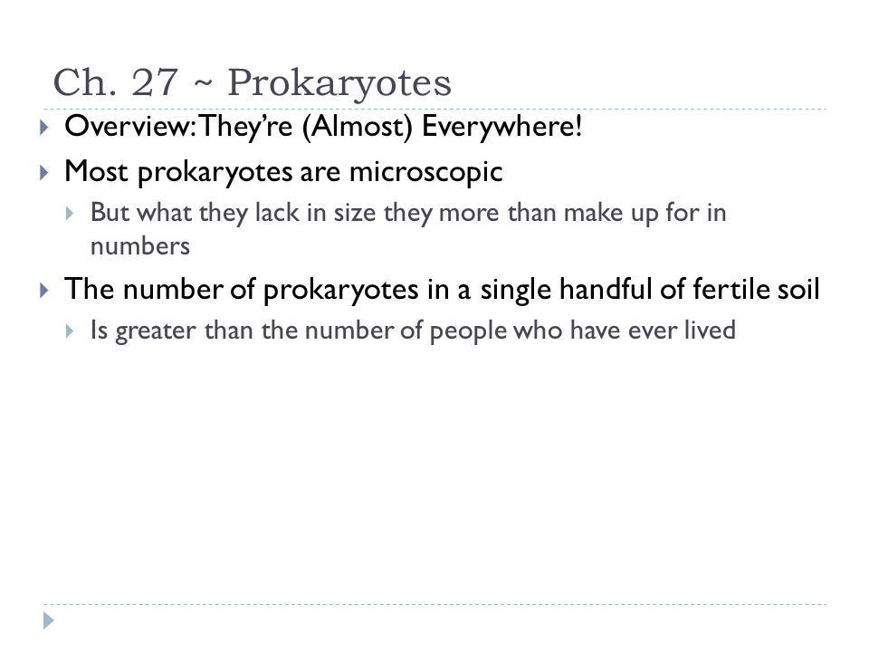 Ch. 27 ~ Prokaryotes  Overview: They're (Almost) Everywhere!  Most prokaryotes are microscopic  But what they lack in size they more than make up f