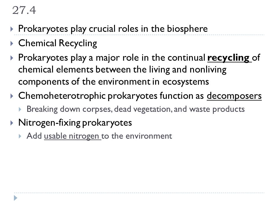27.4  Prokaryotes play crucial roles in the biosphere  Chemical Recycling  Prokaryotes play a major role in the continual recycling of chemical ele