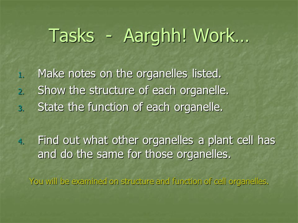 Tasks - Aarghh! Work… 1. Make notes on the organelles listed. 2. Show the structure of each organelle. 3. State the function of each organelle. 4. Fin