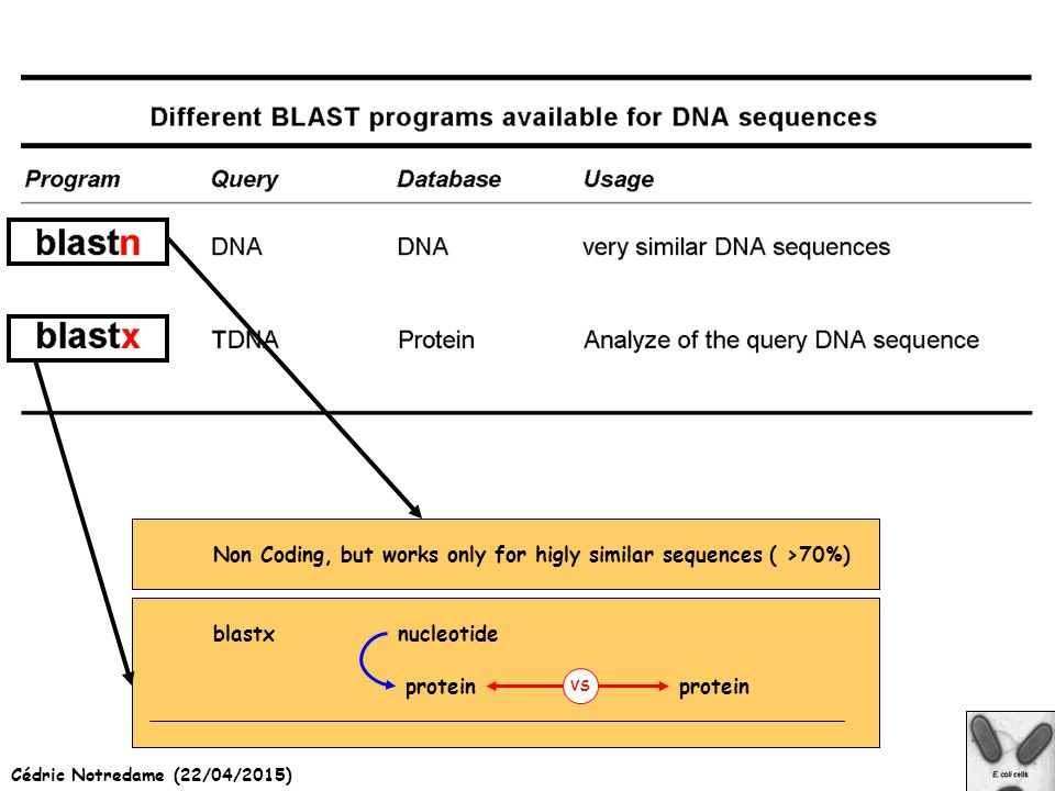 Cédric Notredame (22/04/2015) blastx protein nucleotide protein VS Non Coding, but works only for higly similar sequences ( >70%)