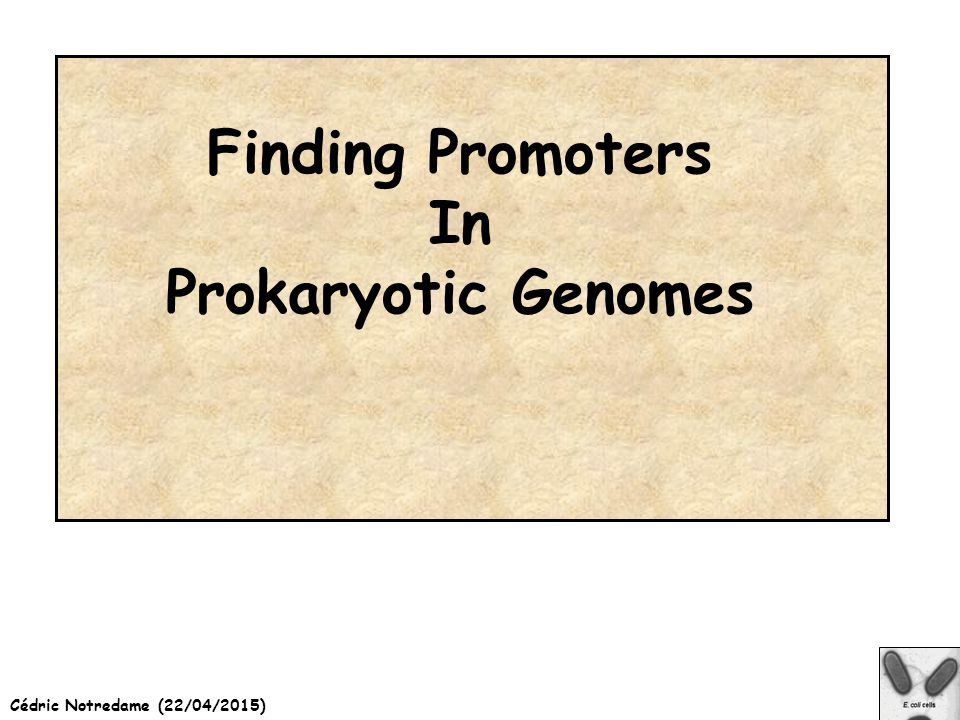 Cédric Notredame (22/04/2015) Finding Promoters In Prokaryotic Genomes
