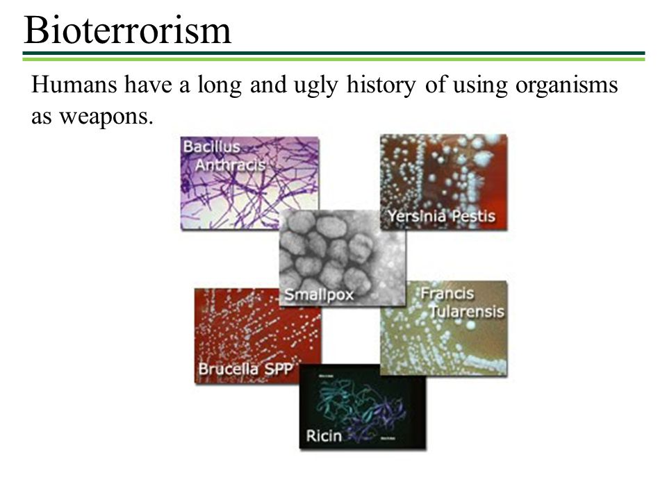 Bioterrorism Humans have a long and ugly history of using organisms as weapons.