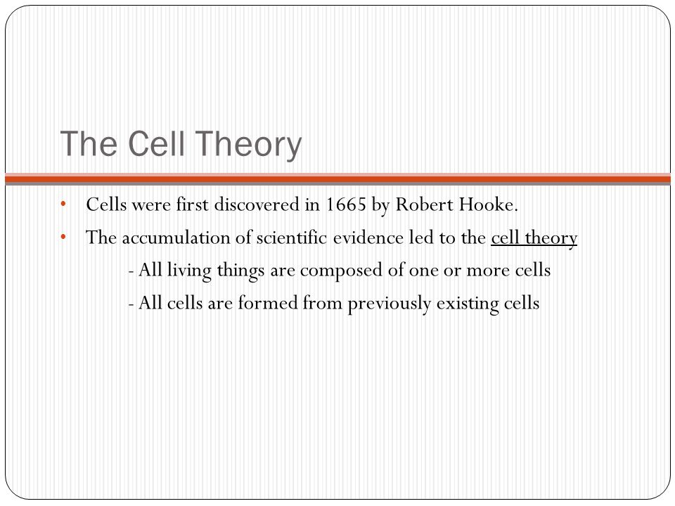 The Cell Theory Cells were first discovered in 1665 by Robert Hooke. The accumulation of scientific evidence led to the cell theory - All living thing
