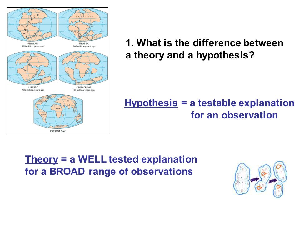 1. What is the difference between a theory and a hypothesis.