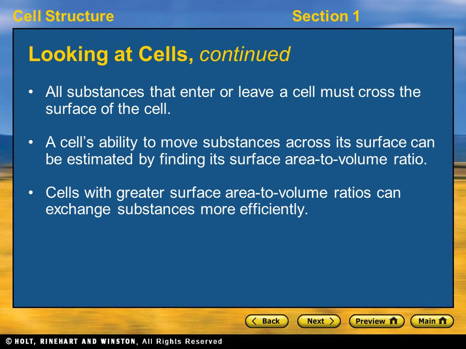 Cell StructureSection 1 Looking at Cells, continued All substances that enter or leave a cell must cross the surface of the cell.