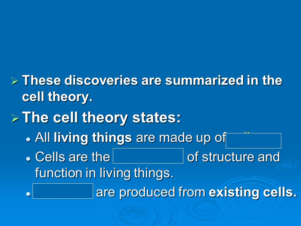  These discoveries are summarized in the cell theory.