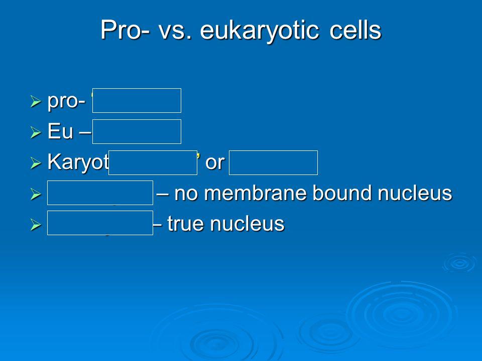 "Pro- vs. eukaryotic cells  pro- ""before""  Eu – ""true""  Karyote ""kernel"" or Nucleus  Prokaryote – no membrane bound nucleus  Eukaryote – true nucl"
