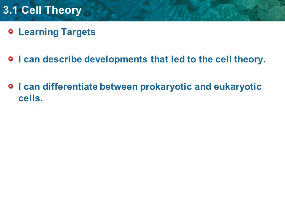 3.1 Cell Theory Learning Targets I can describe developments that led to the cell theory.