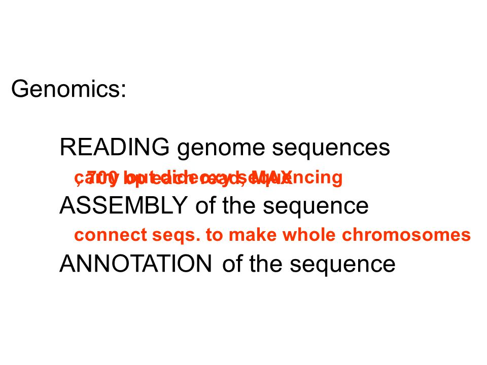 Genomics: READING genome sequences ASSEMBLY of the sequence ANNOTATION of the sequence carry out dideoxy sequencing connect seqs. to make whole chromo