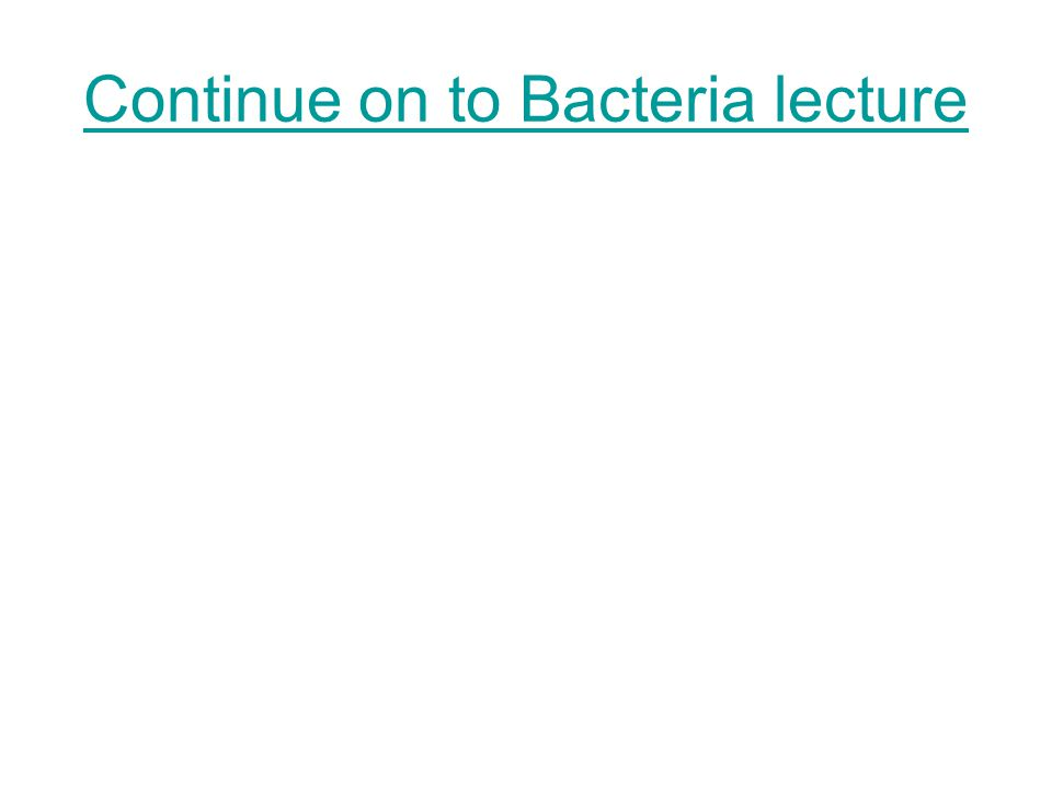 Continue on to Bacteria lecture