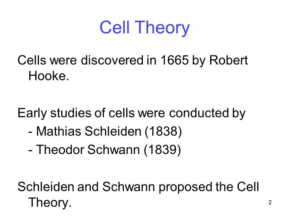13 Textbook pg. 66 Eukaryotic Cell (animal)