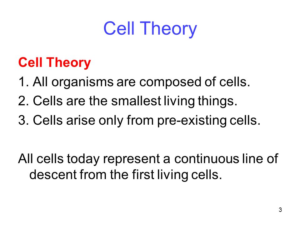 3 Cell Theory 1. All organisms are composed of cells.