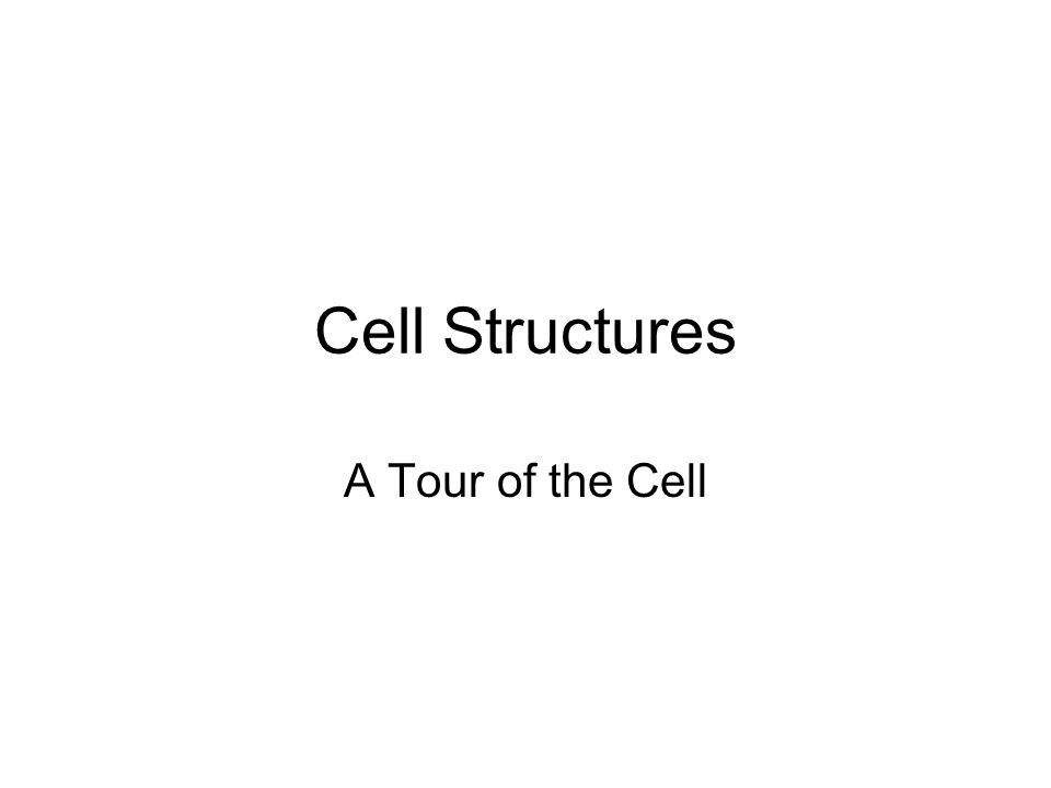 Cell Structures A Tour of the Cell