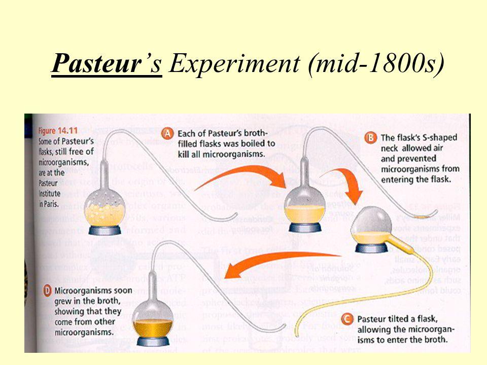 Pasteur's Experiment (mid-1800s)