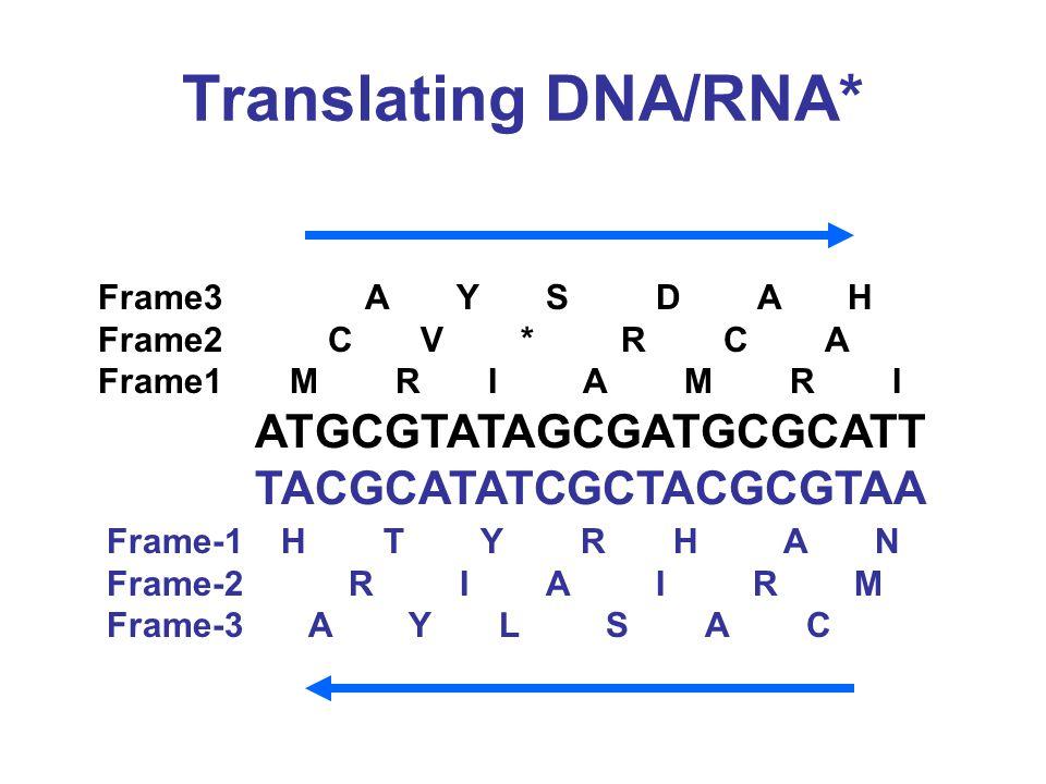 Translating DNA/RNA* ATGCGTATAGCGATGCGCATT TACGCATATCGCTACGCGTAA Frame3 A Y S D A H Frame2 C V * R C A Frame1 M R I A M R I Frame-1 H T Y R H A N Frame-2 R I A I R M Frame-3 A Y L S A C