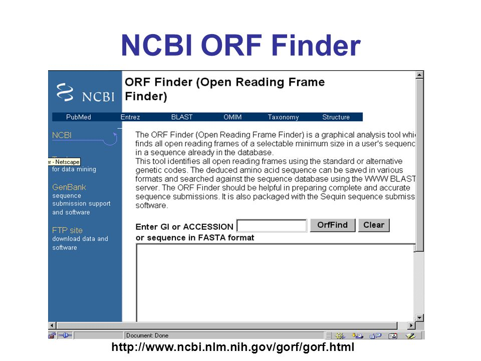 NCBI ORF Finder http://www.ncbi.nlm.nih.gov/gorf/gorf.html
