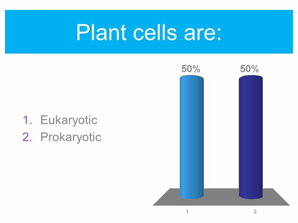 Plant cells are: 1.Eukaryotic 2.Prokaryotic