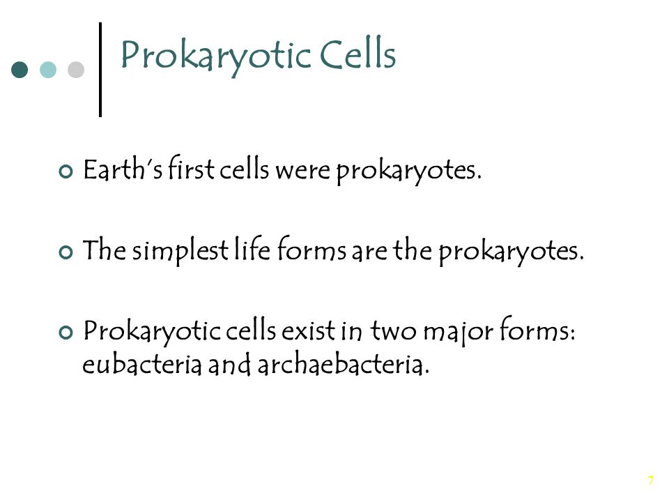 7 Prokaryotic Cells Earth's first cells were prokaryotes. The simplest life forms are the prokaryotes. Prokaryotic cells exist in two major forms: eub