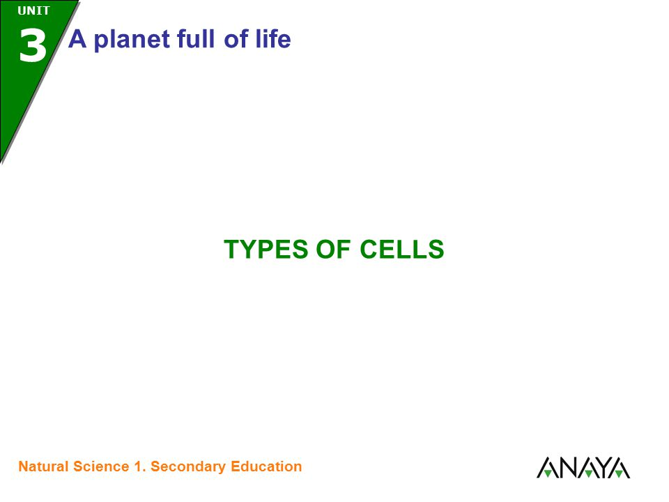 UNIT 3 A planet full of life Natural Science 1. Secondary Education TYPES OF CELLS