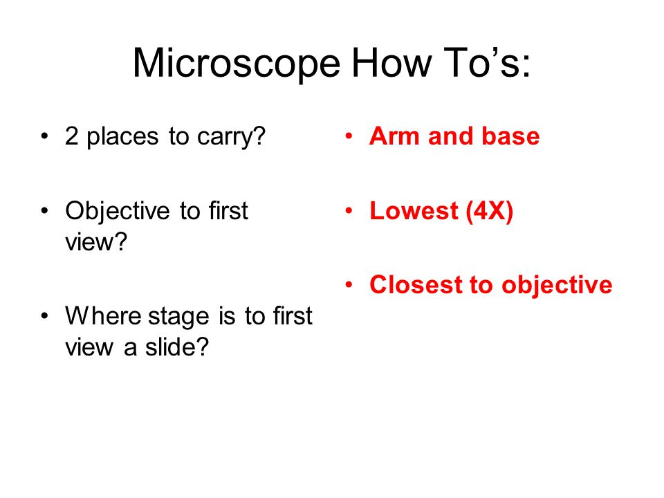Microscope How To's: 2 places to carry. Objective to first view.