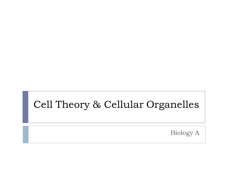 Cell Theory & Cellular Organelles Biology A