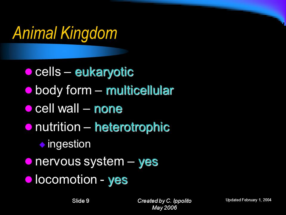 Created by C. Ippolito May 2006 Kingdom Characteristics Characteristics used for grouping Cell Type – Prokaryotic or Eukaryotic Body Form – unicellula