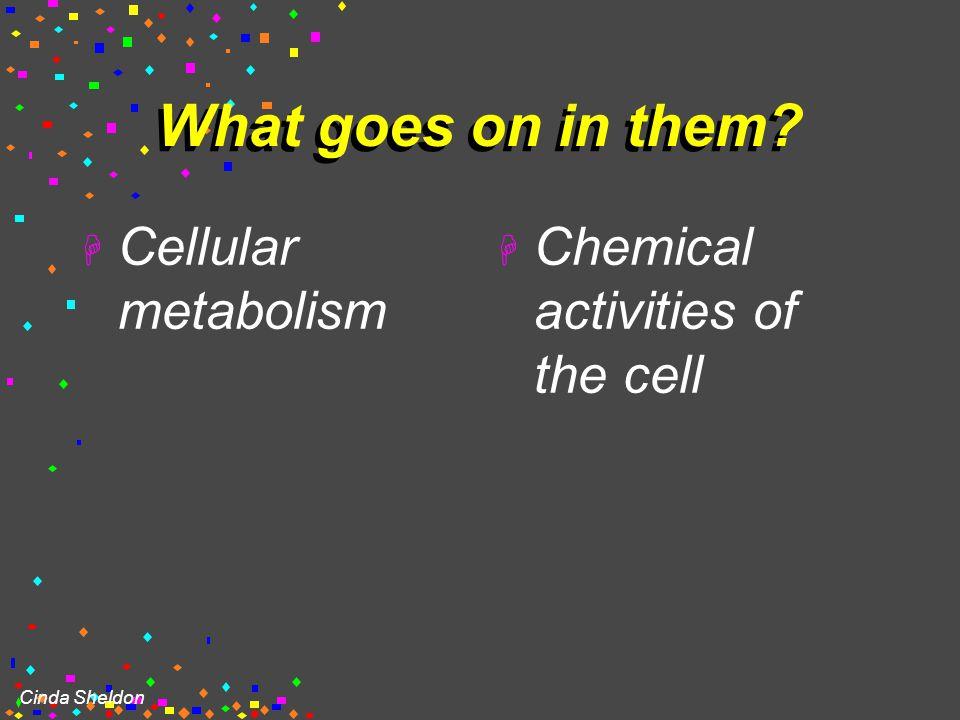 "Cinda Sheldon Organelles  ""little organs""  most are membranous"