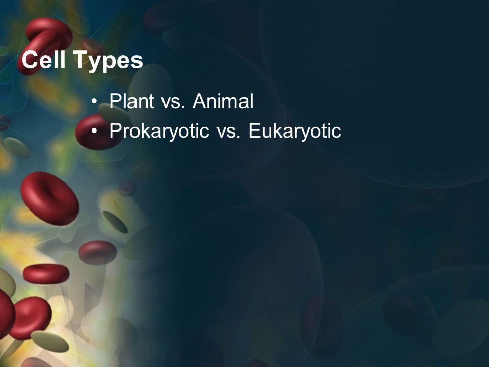 How are eukaryotic and prokaryotic cells similar.