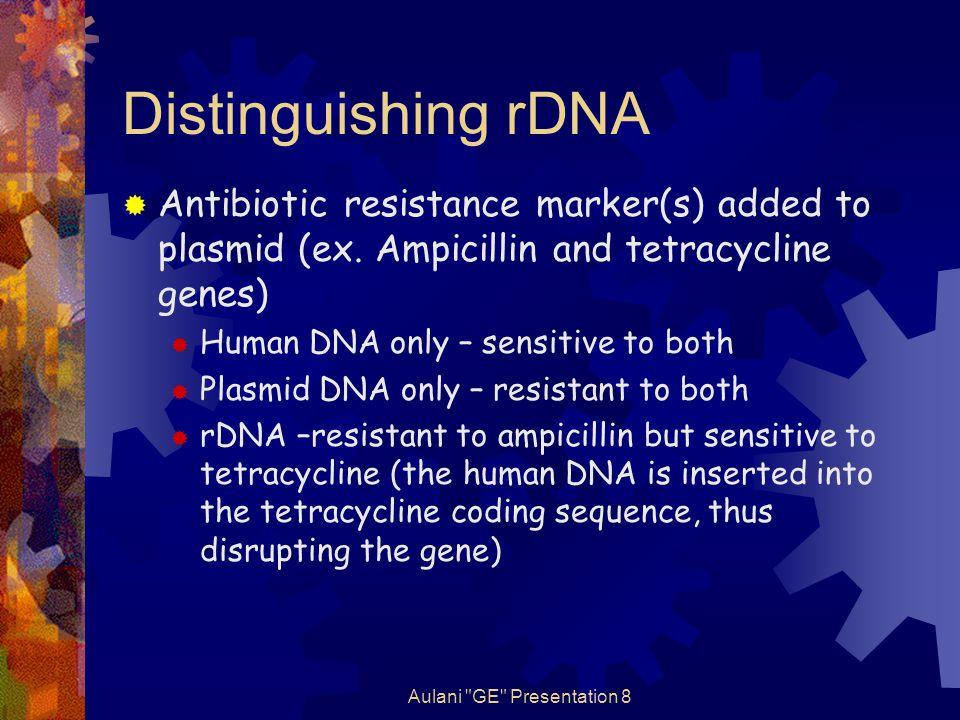 Aulani GE Presentation 8 Distinguishing rDNA  Antibiotic resistance marker(s) added to plasmid (ex.