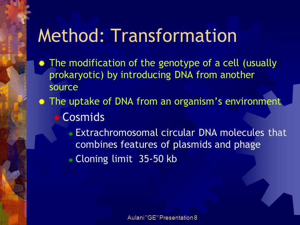 Aulani GE Presentation 8 Method: Transformation  The modification of the genotype of a cell (usually prokaryotic) by introducing DNA from another source  The uptake of DNA from an organism's environment  Cosmids  Extrachromosomal circular DNA molecules that combines features of plasmids and phage  Cloning limit 35-50 kb