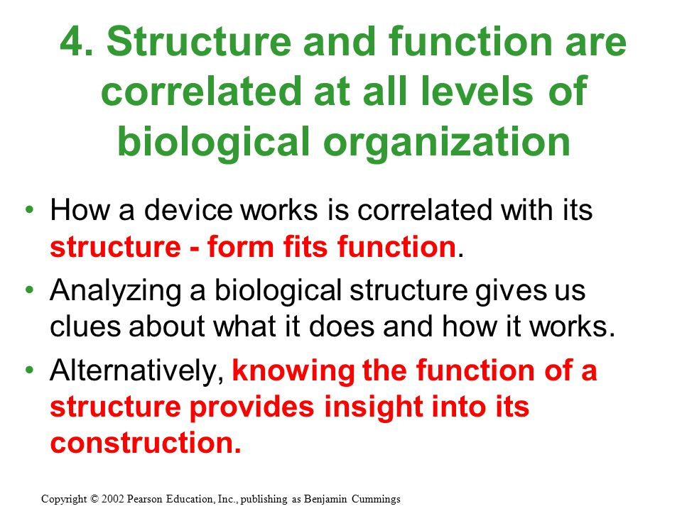 How a device works is correlated with its structure - form fits function. Analyzing a biological structure gives us clues about what it does and how i
