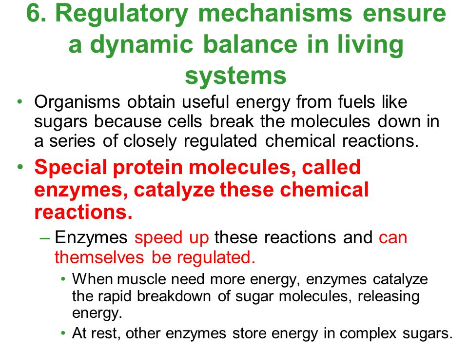 Organisms obtain useful energy from fuels like sugars because cells break the molecules down in a series of closely regulated chemical reactions. Spec