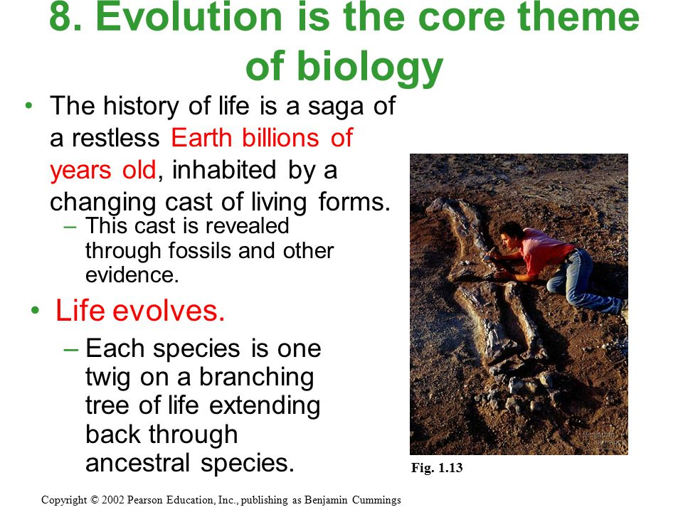 The history of life is a saga of a restless Earth billions of years old, inhabited by a changing cast of living forms. 8. Evolution is the core theme