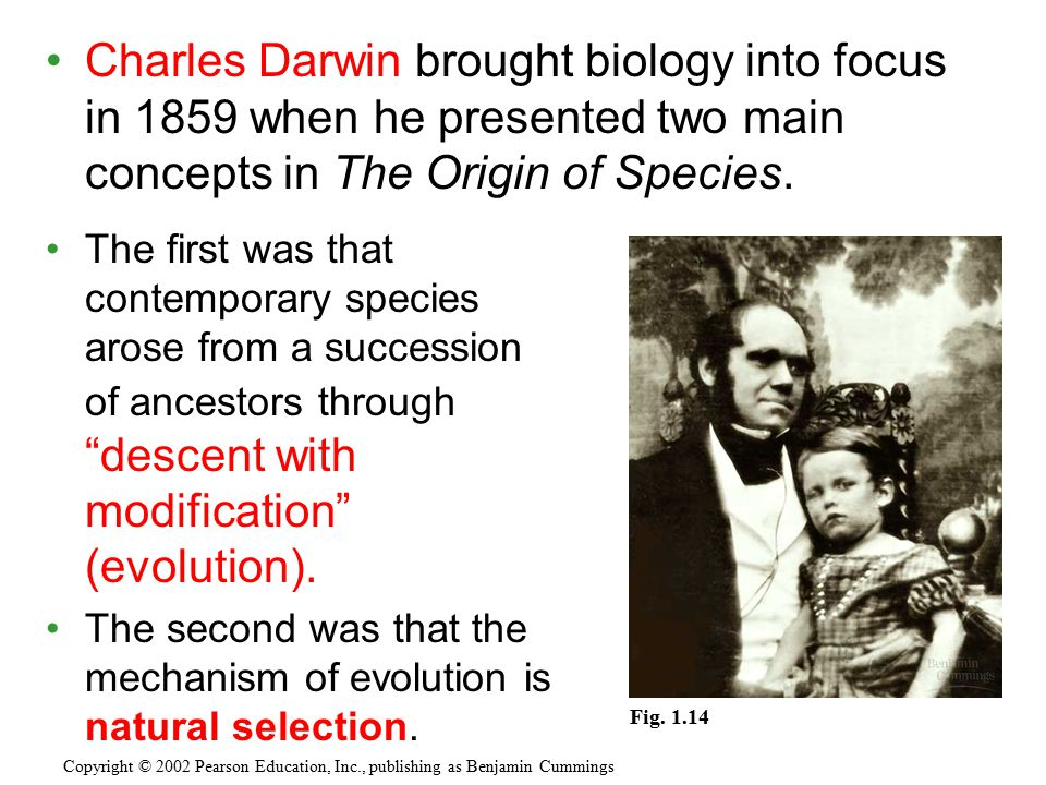 Charles Darwin brought biology into focus in 1859 when he presented two main concepts in The Origin of Species. Copyright © 2002 Pearson Education, In